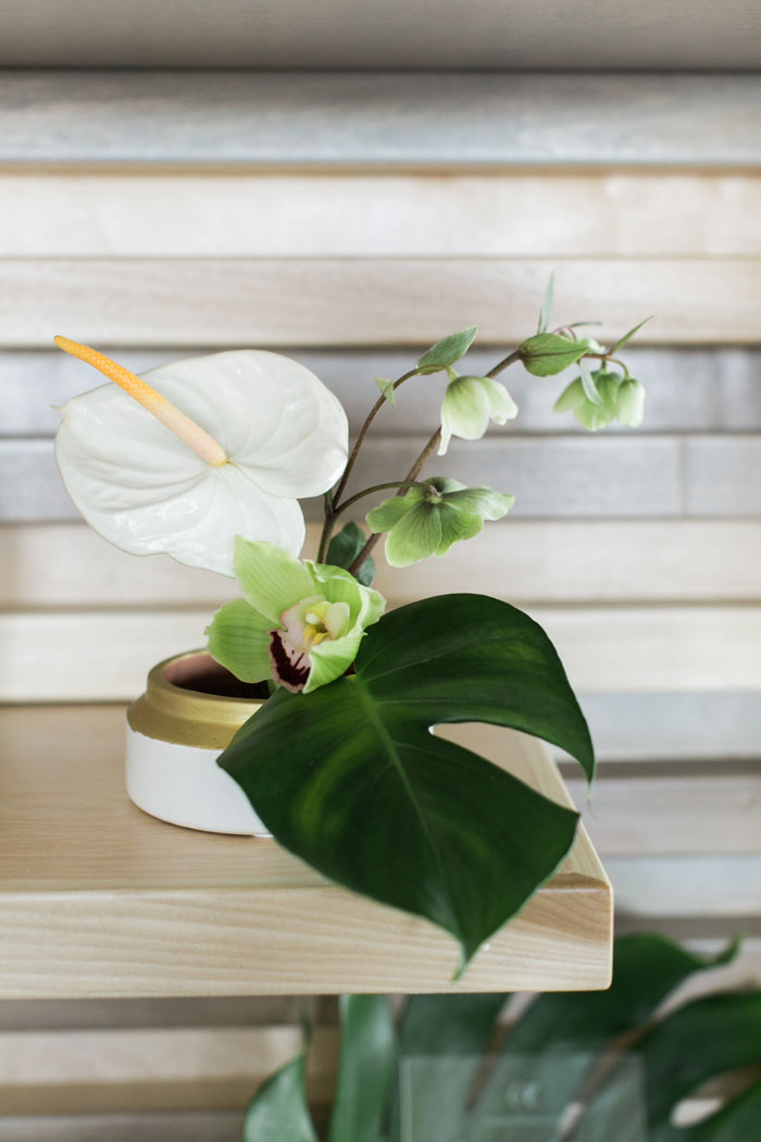Minimal, modern, and tropical centerpiece.