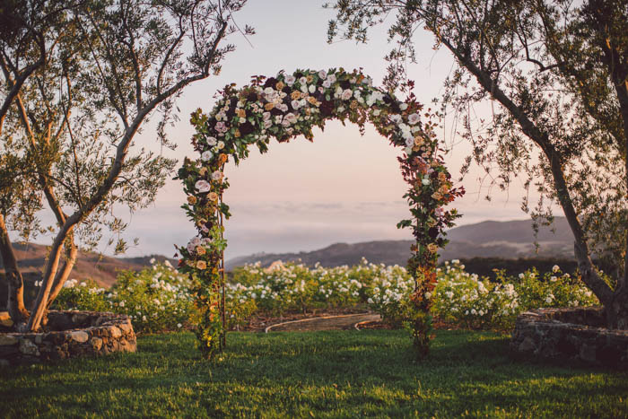 Floral arch full of garden roses, roses, sprays and dahilias in fall colors of blush, berry, burgundy and gold