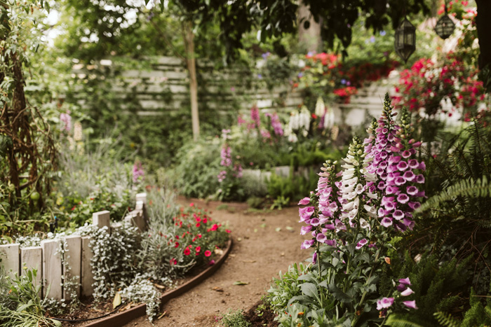 Gorgeous cottage garden paths lined with purple flowers