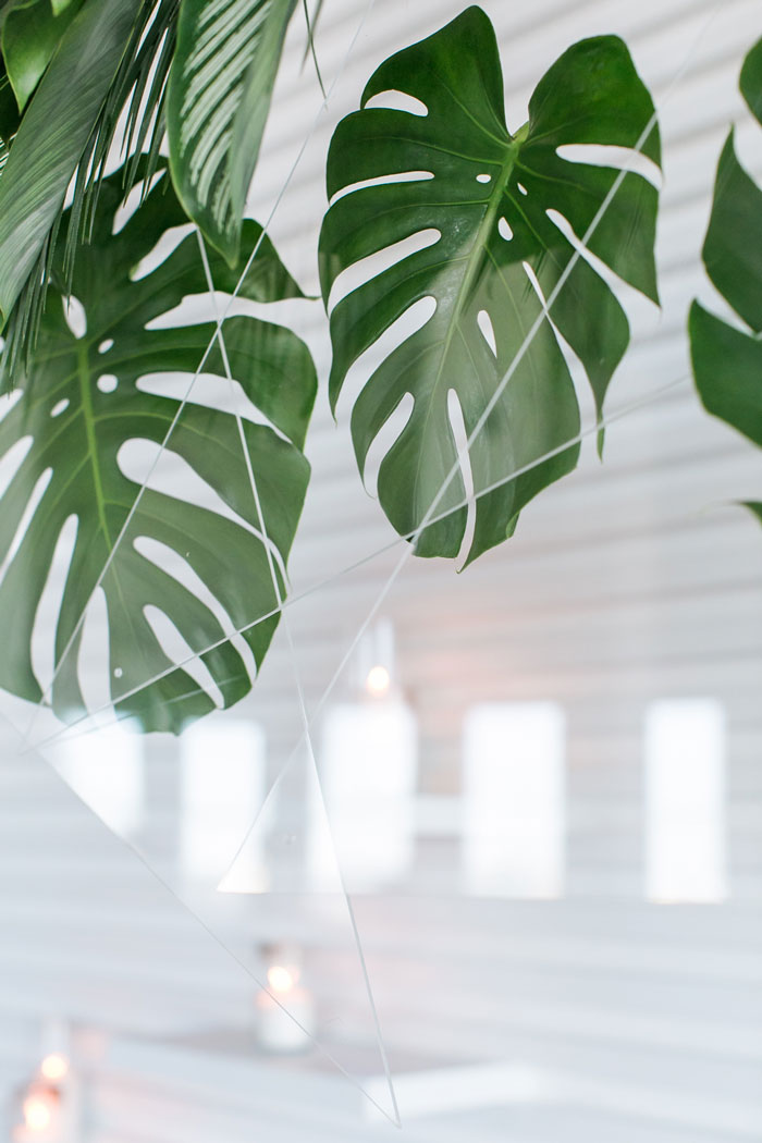 Acrylic geometric shapes frame monstera leaves for cool, minimal, tropical ceremony decor by Winston & Main.