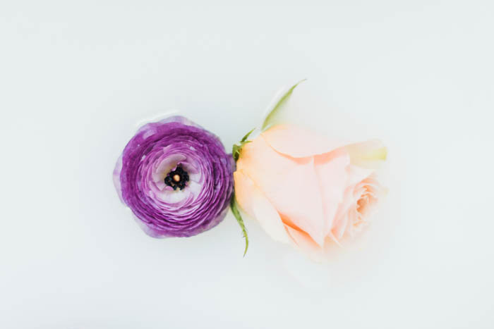 Better together- a purple japanese ranunculus and a peachy rose.